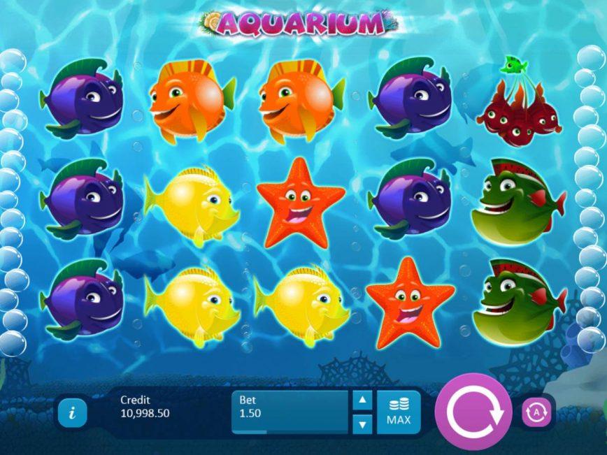 Встреча с экзотическими рыбками на игровом слоте «Aquarium» в казино 1xbet