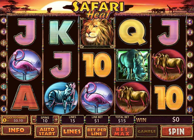 Описание слота Safari Heat (Сафари) в казино Алтын