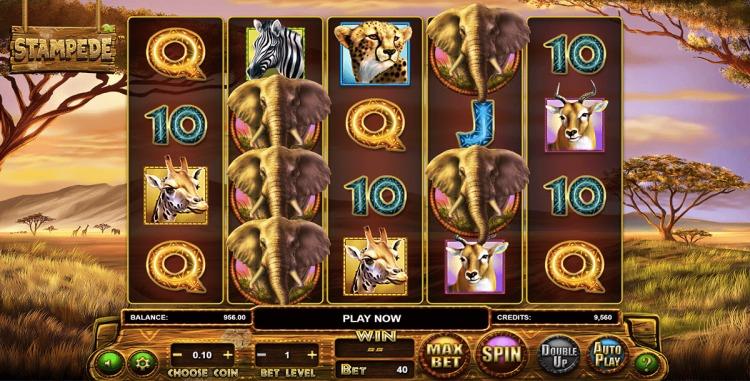 Онлайн слоты «Stampede» в казино Вулкан