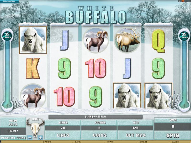 Настоящая охота на игровом слоте «White Buffalo» в онлайн казино Император